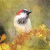 Backyard Bird in Autumn Art Print