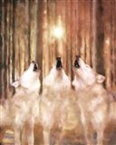 Three Wolf Howl Art Print