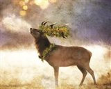 Holly and Ivy Stag Art Print