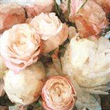 English Rose Garden Art Print