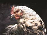 Rooster Portrait Art Print