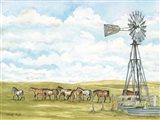 Pasture Horses Art Print