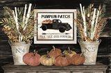 Pumpkin Patch Still Life Art Print