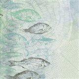 Swimming Fish Art Print