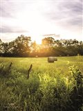 Daybreak in the Country I Art Print