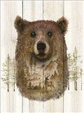 Bear Wilderness Portrait Art Print