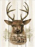 Deer Wilderness Portrait Art Print
