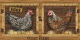 Chicken House Art Print