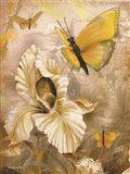 Flower & Butterflies I Art Print