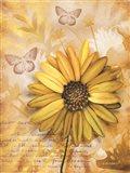 Flower & Butterflies II Art Print