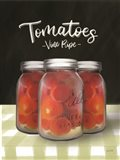Farm Fresh Tomatoes Art Print