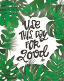 Use This Day for Good Art Print