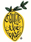 Squeeze the Day Art Print