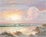 Golden Sunset on Crystal Cove Art Print