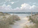 Pathway Through the Dunes Art Print