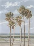 Wind in the Palms Art Print