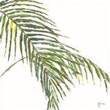 Two Palm Fronds II Art Print