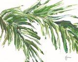 Green Palm Leaves Art Print