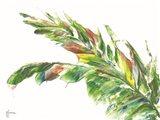 Palm Leaves Vivid Art Print