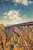 Bridge Over Trees Art Print
