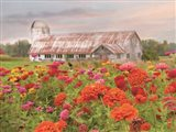 Vermont Flowers Art Print