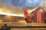 Good Morning Rooster Art Print