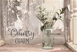 Country Charm Art Print