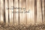 Take a Journey and Discover Your Soul Art Print
