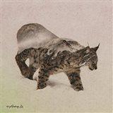 Lynx - North Art Print