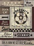 Soccer Goal Art Print