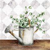 Eucalyptus White Watering Can Art Print