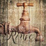 Rinse Art Print