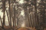 Path of Pines Art Print