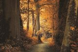 Path to the Light Art Print