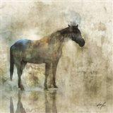 Horse Reflection I Art Print