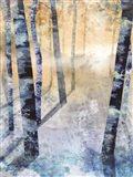 Winter Path Unknown I Art Print