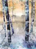 Winter Path Unknown II Art Print