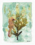 Seahorse 1 Art Print
