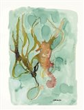 Seahorse 2 Art Print