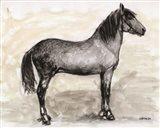Horse Study 1 Art Print