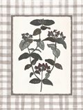 Floral Medley 1 Art Print