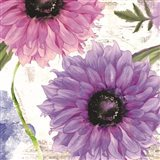 Purplette Art Print