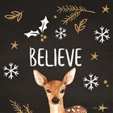 Believe Deer Art Print