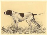 Hunting Dogs-Pointer Art Print