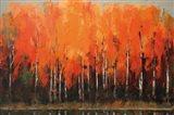 Birch Shoreline Art Print