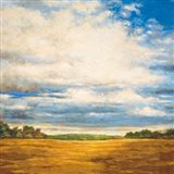 Tranquil Meadow Art Print