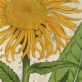 Joyful Bloom I Art Print