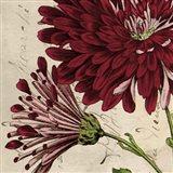 Joyful Bloom II Art Print