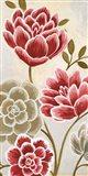 Lace Petals II Art Print
