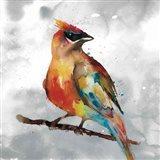 Cardinal Art Print